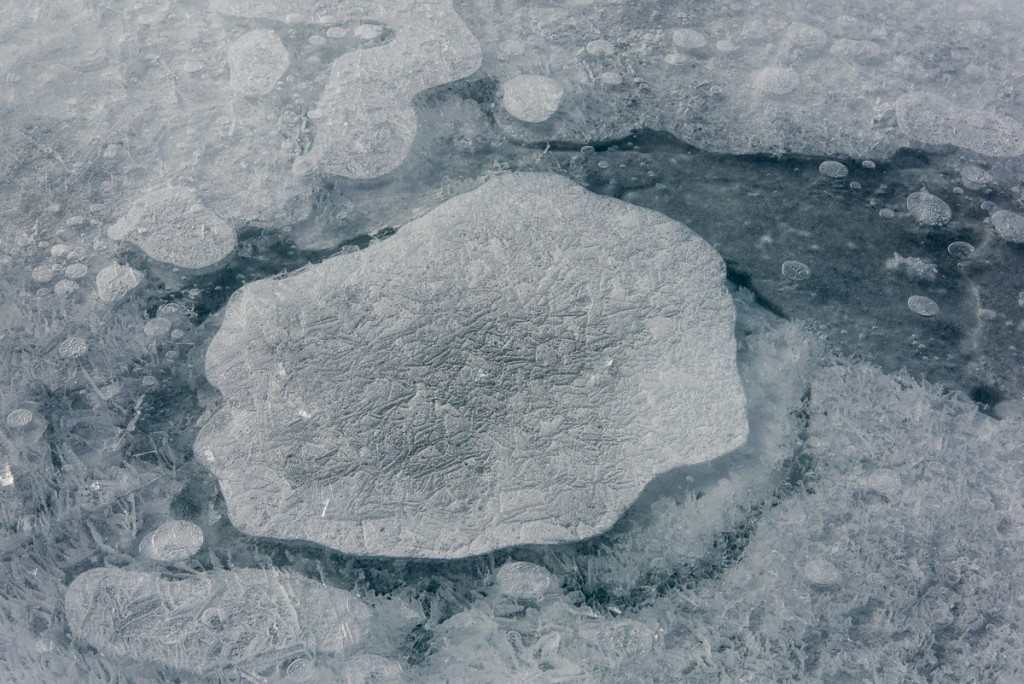 Ice formation, lake at Cape Royds
