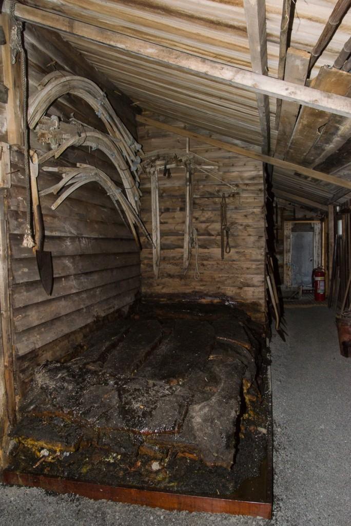 Seal blubber, Cape Evans hut