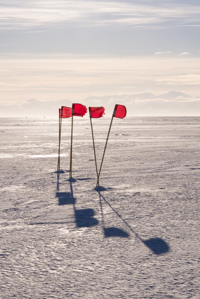 Flags in the sea ice