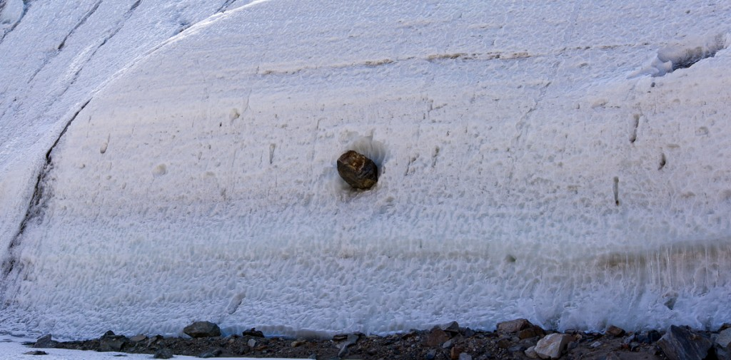Rock embedded in Suess Glacier